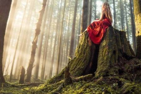 Natural Experience Sensoriale – Inside/Outside